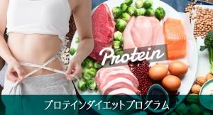 プロテインダイエットプログラム